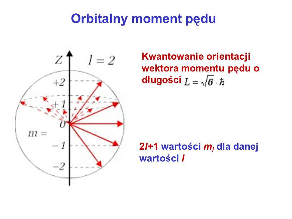 Orbitalny moment pędu Kwantowanie orientacji wektora momentu pędu o długości 2l+1 wartości m l dla danej wartości l