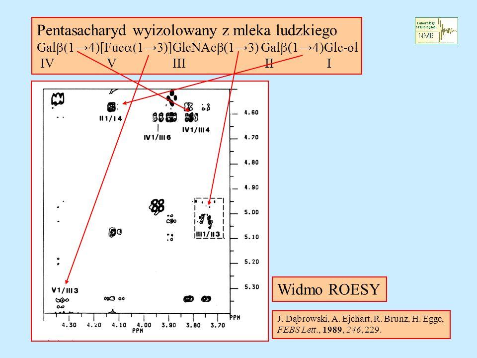 Pentasacharyd wyizolowany z mleka ludzkiego Gal 14)[Fuc 13)]GlcNAc (13) Gal (14)Glc-ol IV V III II I Widmo ROESY J. Dąbrowski, A. Ejchart, R. Brunz, H