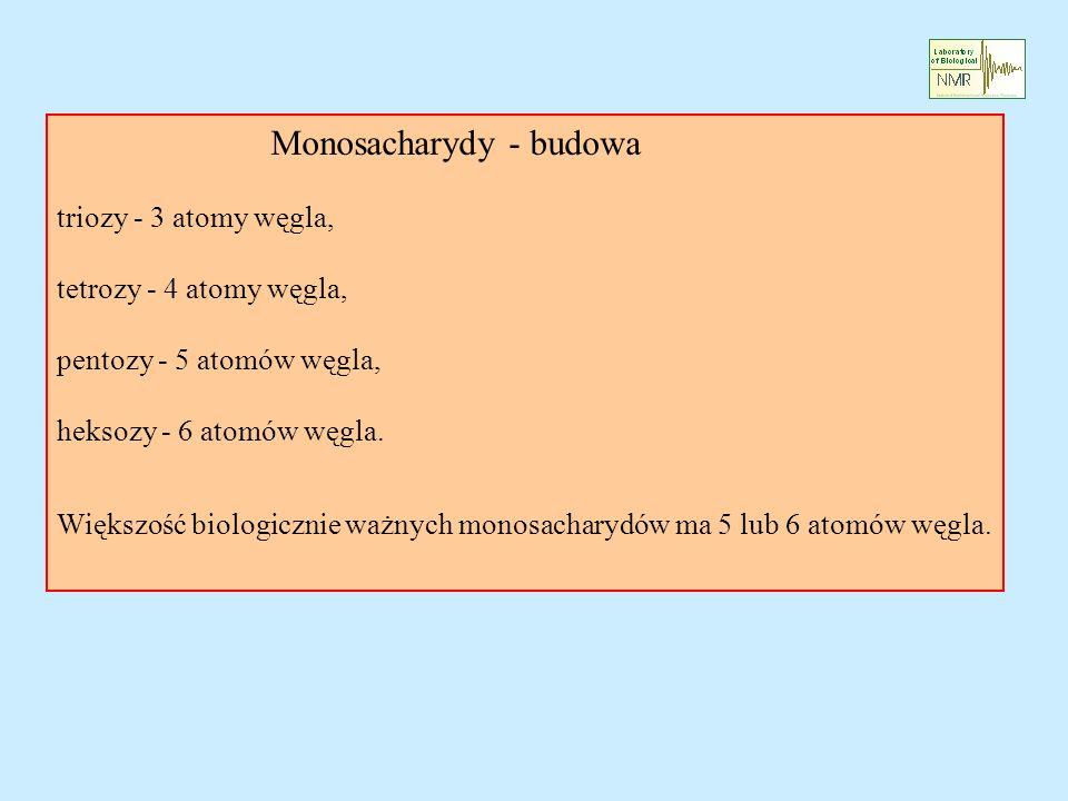 Monosacharydy - budowa triozy - 3 atomy węgla, tetrozy - 4 atomy węgla, pentozy - 5 atomów węgla, heksozy - 6 atomów węgla. Większość biologicznie waż