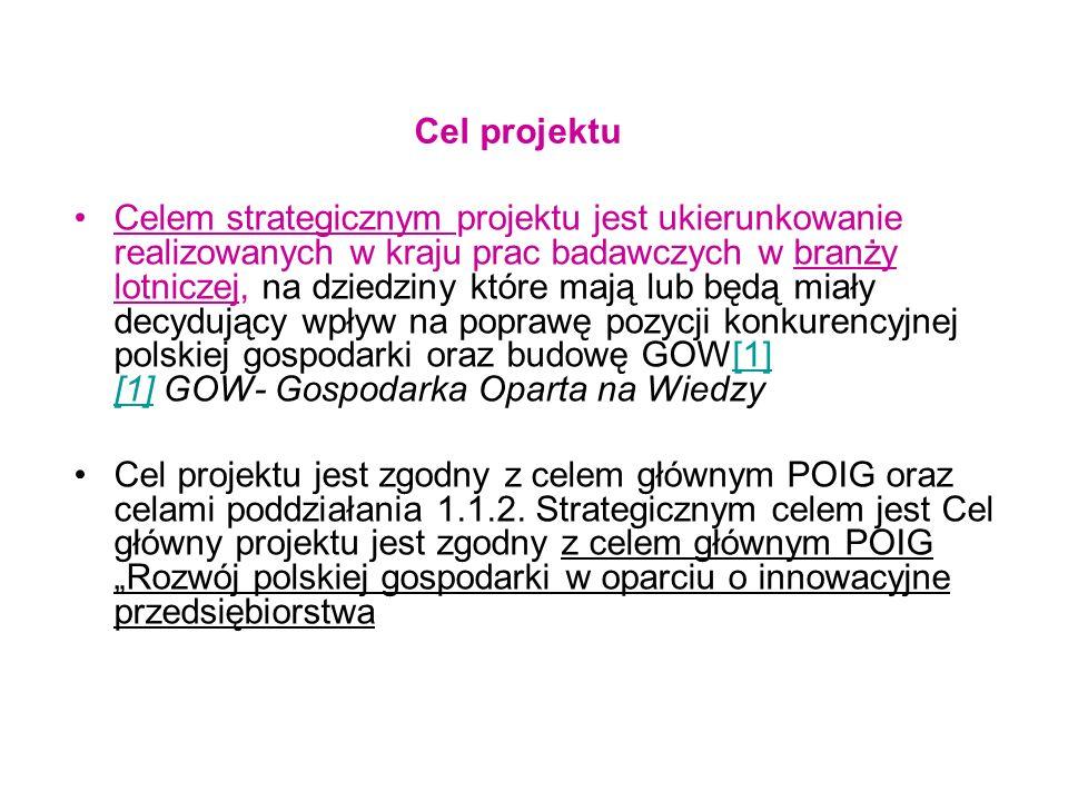 Wskaźniki realizacji celów projektu.Wskaźniki produktu osiągnięte do 30 czerwca 2009 r.