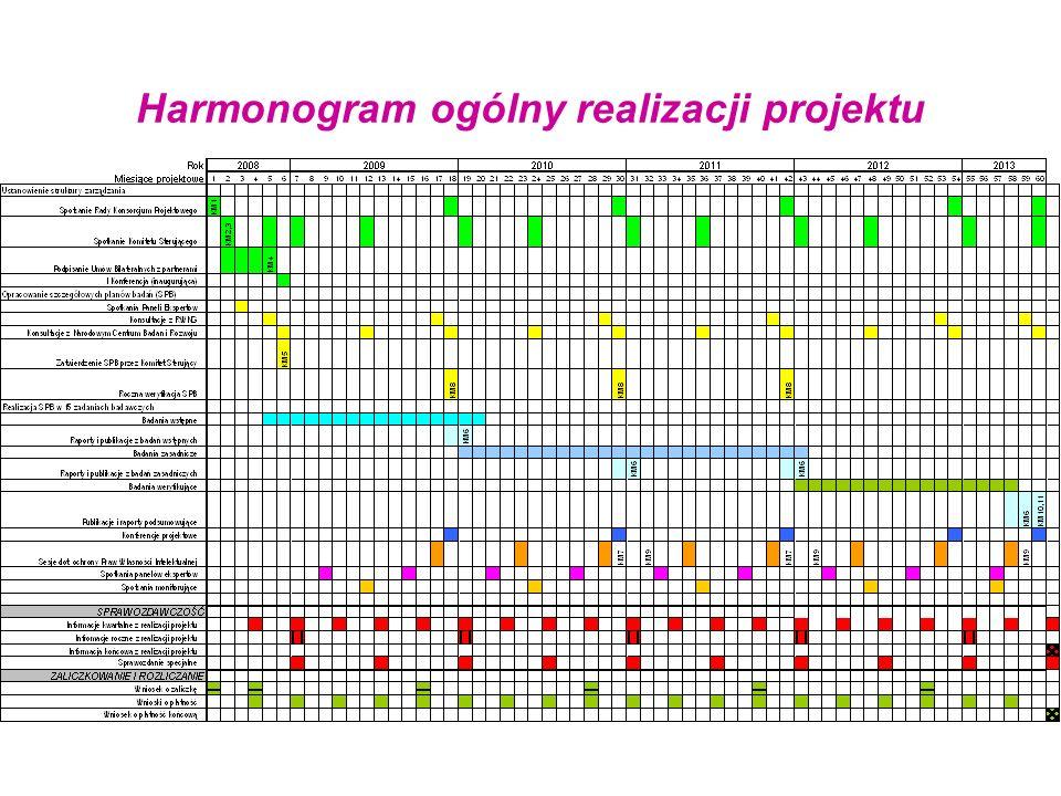 Harmonogram ogólny realizacji projektu