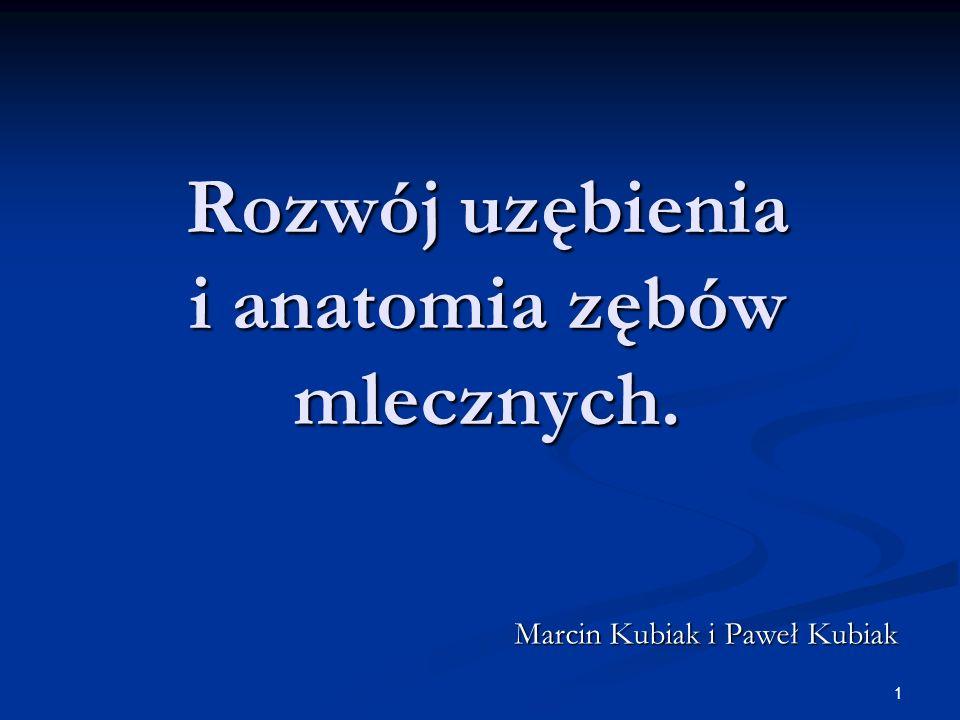 1 Rozwój uzębienia i anatomia zębów mlecznych. Marcin Kubiak i Paweł Kubiak