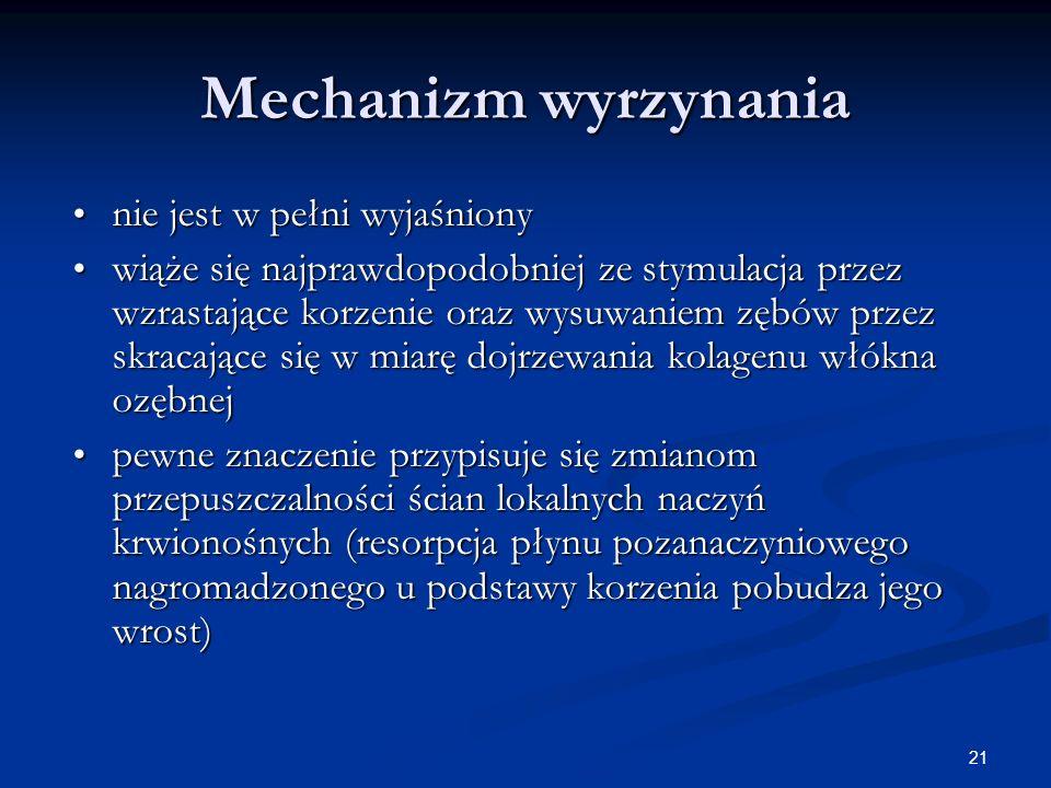 21 Mechanizm wyrzynania nie jest w pełni wyjaśniony nie jest w pełni wyjaśniony wiąże się najprawdopodobniej ze stymulacja przez wzrastające korzenie