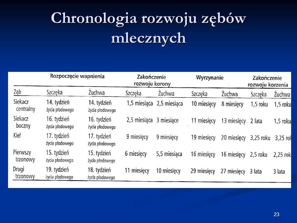 23 Chronologia rozwoju zębów mlecznych