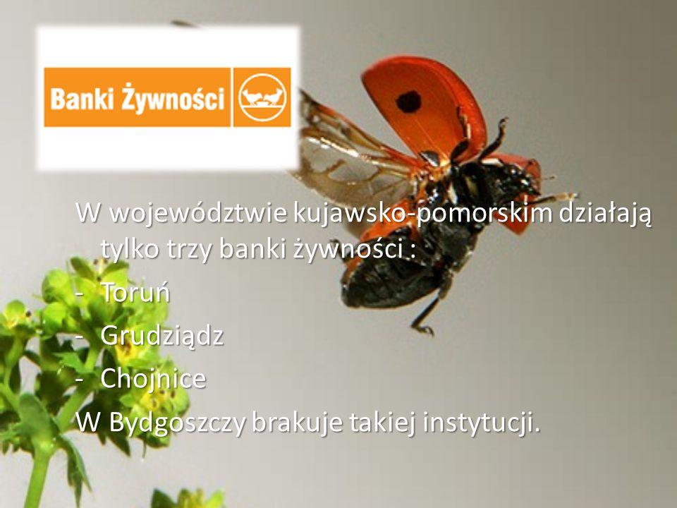 W województwie kujawsko-pomorskim działają tylko trzy banki żywności : -Toruń -Grudziądz -Chojnice W Bydgoszczy brakuje takiej instytucji.