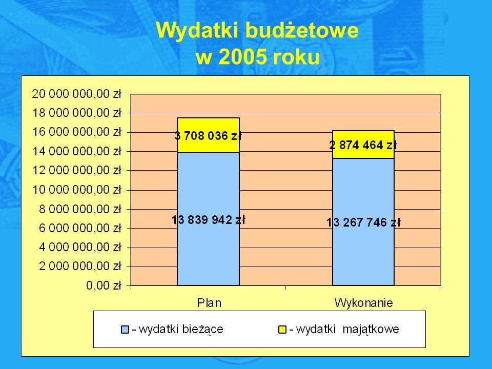 Wydatki budżetowe w 2005 roku