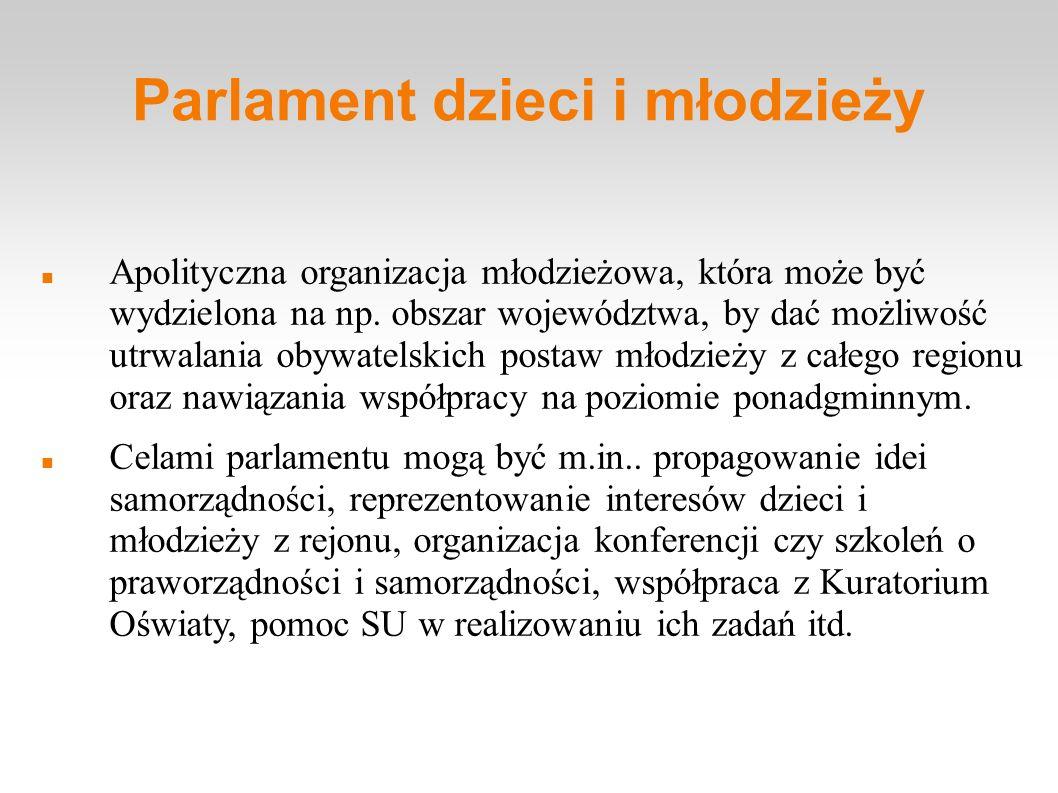 Parlament dzieci i młodzieży Apolityczna organizacja młodzieżowa, która może być wydzielona na np. obszar województwa, by dać możliwość utrwalania oby