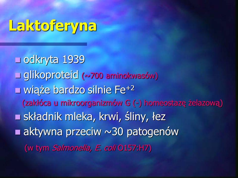 Laktoferyna odkryta 1939 odkryta 1939 glikoproteid (~700 aminokwasów) glikoproteid (~700 aminokwasów) wiąże bardzo silnie Fe +2 wiąże bardzo silnie Fe