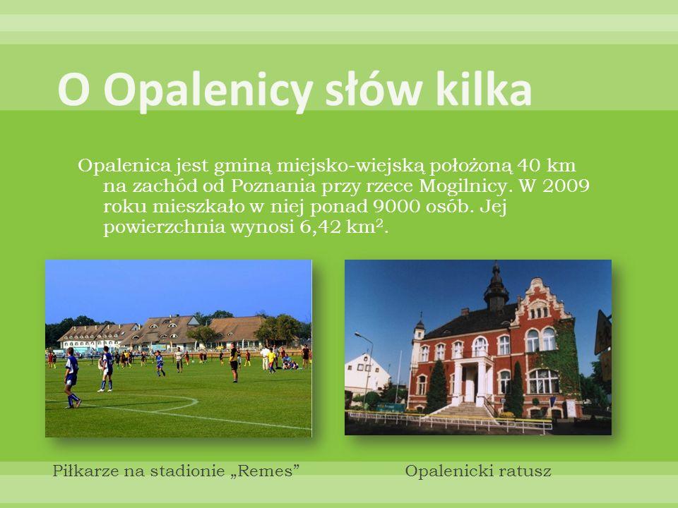 Opalenica jest gminą miejsko-wiejską położoną 40 km na zachód od Poznania przy rzece Mogilnicy. W 2009 roku mieszkało w niej ponad 9000 osób. Jej powi