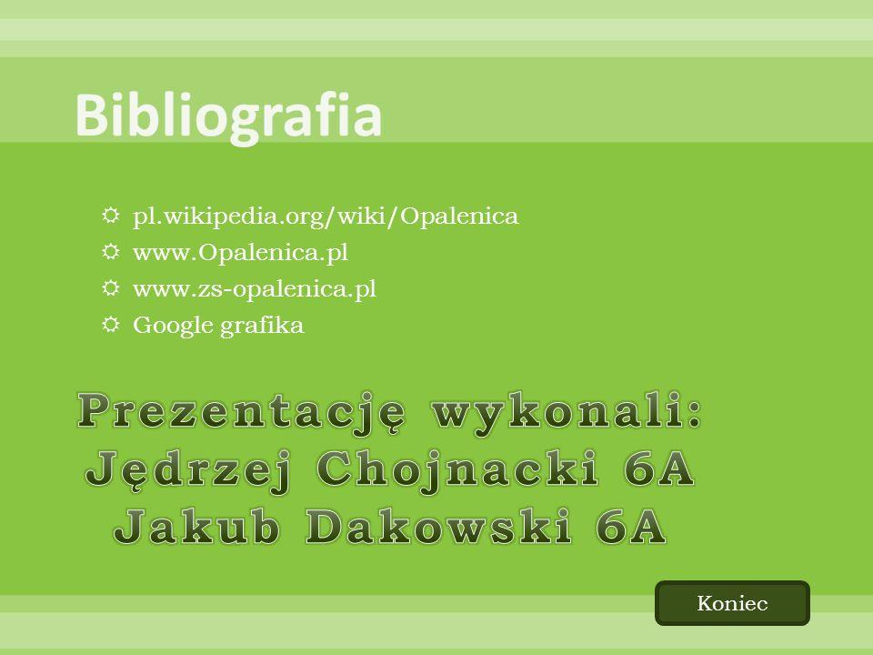 pl.wikipedia.org/wiki/Opalenica www.Opalenica.pl www.zs-opalenica.pl Google grafika Koniec