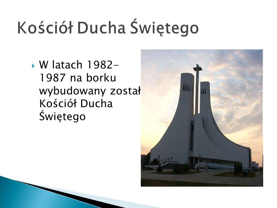 W latach 1982- 1987 na borku wybudowany został Kościół Ducha Świętego