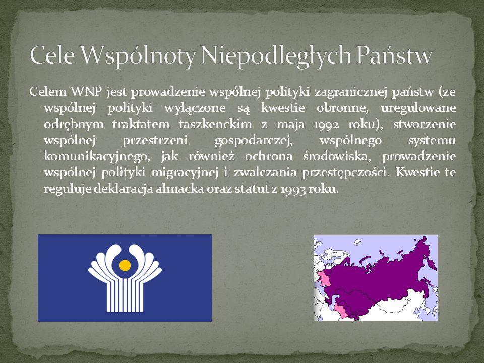 Celem WNP jest prowadzenie wspólnej polityki zagranicznej państw (ze wspólnej polityki wyłączone są kwestie obronne, uregulowane odrębnym traktatem ta