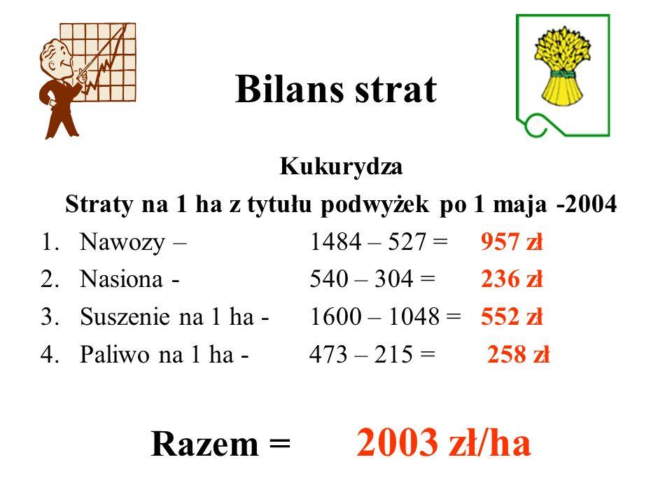 Bilans strat Kukurydza Straty na 1 ha z tytułu podwyżek po 1 maja -2004 1.Nawozy – 1484 – 527 = 957 zł 2.Nasiona - 540 – 304 = 236 zł 3.Suszenie na 1