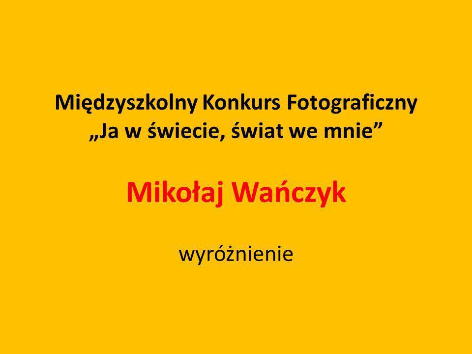 Międzyszkolny Konkurs Fotograficzny Ja w świecie, świat we mnie Mikołaj Wańczyk wyróżnienie