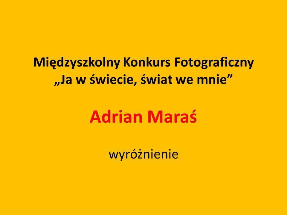 Międzyszkolny Konkurs Fotograficzny Ja w świecie, świat we mnie Adrian Maraś wyróżnienie