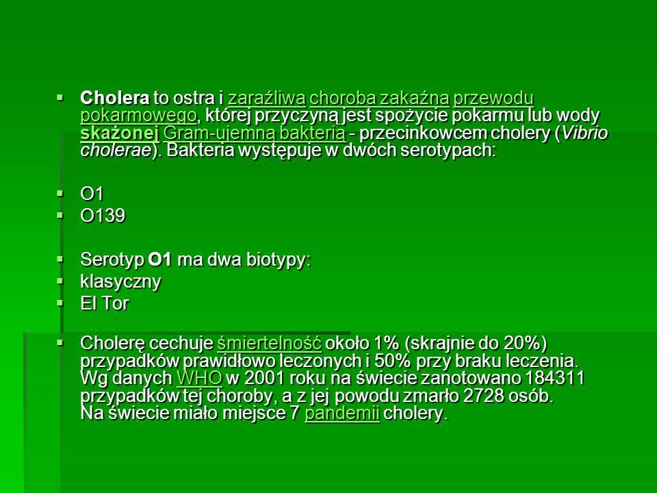 Cholera to ostra i zaraźliwa choroba zakaźna przewodu pokarmowego, której przyczyną jest spożycie pokarmu lub wody skażonej Gram-ujemną bakterią - prz