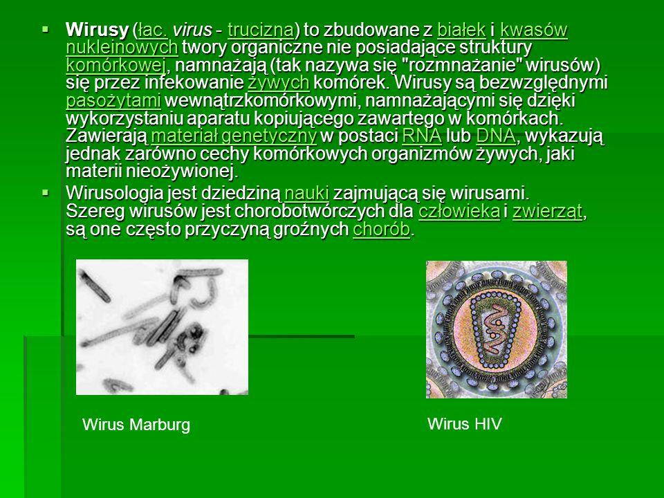 Wirusy (łac. virus - trucizna) to zbudowane z białek i kwasów nukleinowych twory organiczne nie posiadające struktury komórkowej, namnażają (tak nazyw