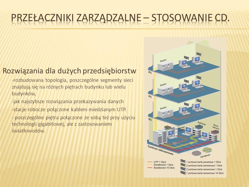 Rozwiązania dla dużych przedsiębiorstw -rozbudowana topologia, poszczególne segmenty sieci znajdują się na różnych piętrach budynku lub wielu budynków