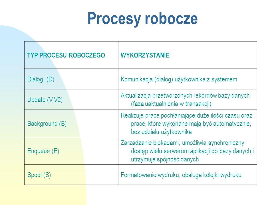 Procesy robocze TYP PROCESU ROBOCZEGOWYKORZYSTANIE Dialog (D)Komunikacja (dialog) użytkownika z systemem Update (V,V2) Aktualizacja przetworzonych rek