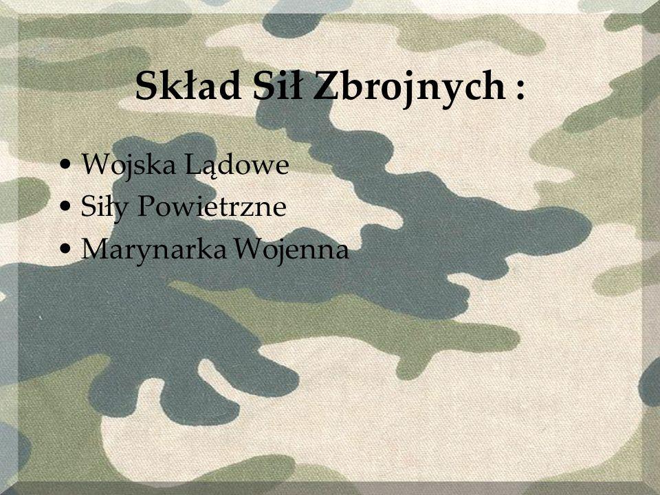 Wojska Lądowe Oddziały Wojsk Lądowych służą do ataku naziemnego z ziemi, oraz do obrony granic.