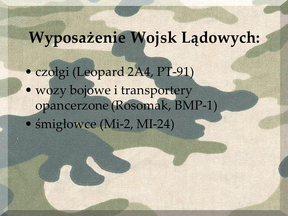 Wyposażenie Wojsk Lądowych: czołgi (Leopard 2A4, PT-91) wozy bojowe i transportery opancerzone (Rosomak, BMP-1) śmigłowce (Mi-2, MI-24)