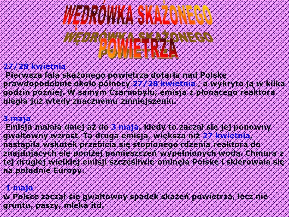 Wtedy w Polsce nie istniała energetyka jądrowa ani żadne plany na wypadek takiej katastrofy. Nikt nie spodziewał się wówczas, aby awaria w cywilnym za