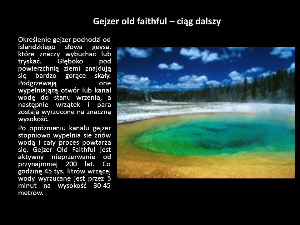 Gejzer old faithful Yellowstone to pierwszy park narodowy na świecie (ustanowiony w 1872 roku), a zarazem największy park narodowy USA. Przeważająca j