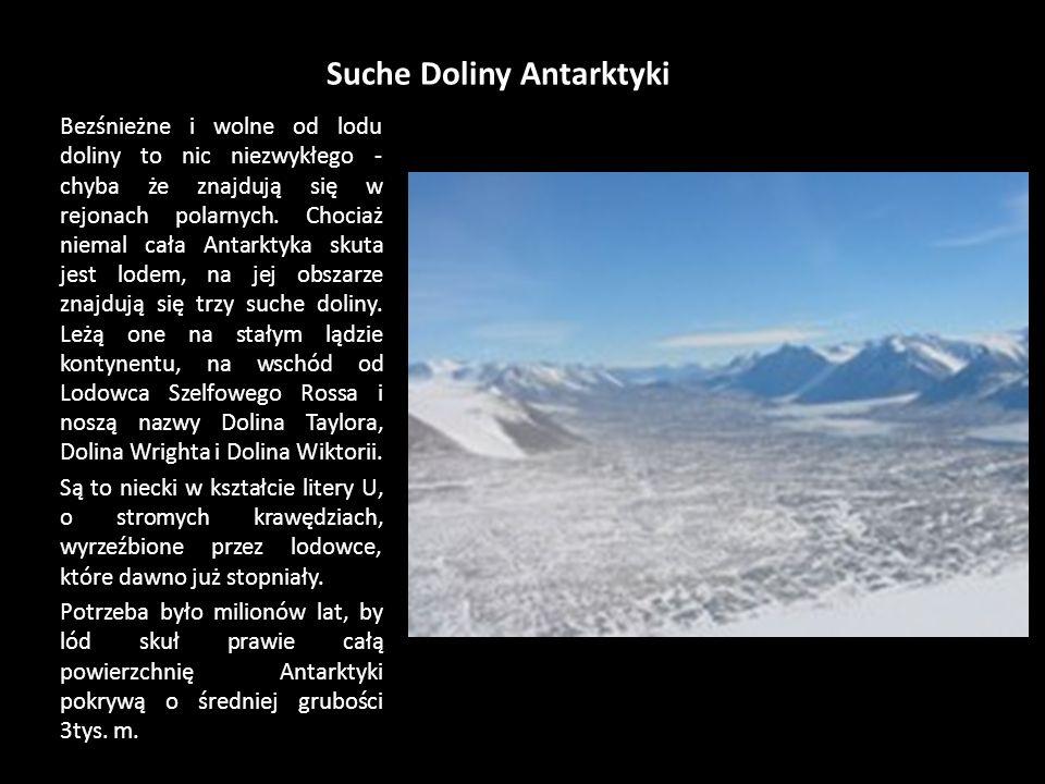 Lodowiec Szelfowy Rossa – ciąg dalszy Szelf został odkryty w 1840 roku przez angielskiego badacza polarnego Jamesa Clarka Rossa. Ross, próbując zlokal