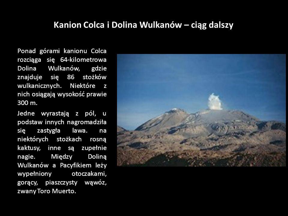 Kanion Colca i Dolina Wulkanów – ciąg dalszy Ponad górami kanionu Colca rozciąga się 64-kilometrowa Dolina Wulkanów, gdzie znajduje się 86 stożków wulkanicznych.