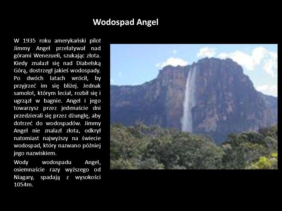 Wodospad Angel W 1935 roku amerykański pilot Jimmy Angel przelatywał nad górami Wenezueli, szukając złota.