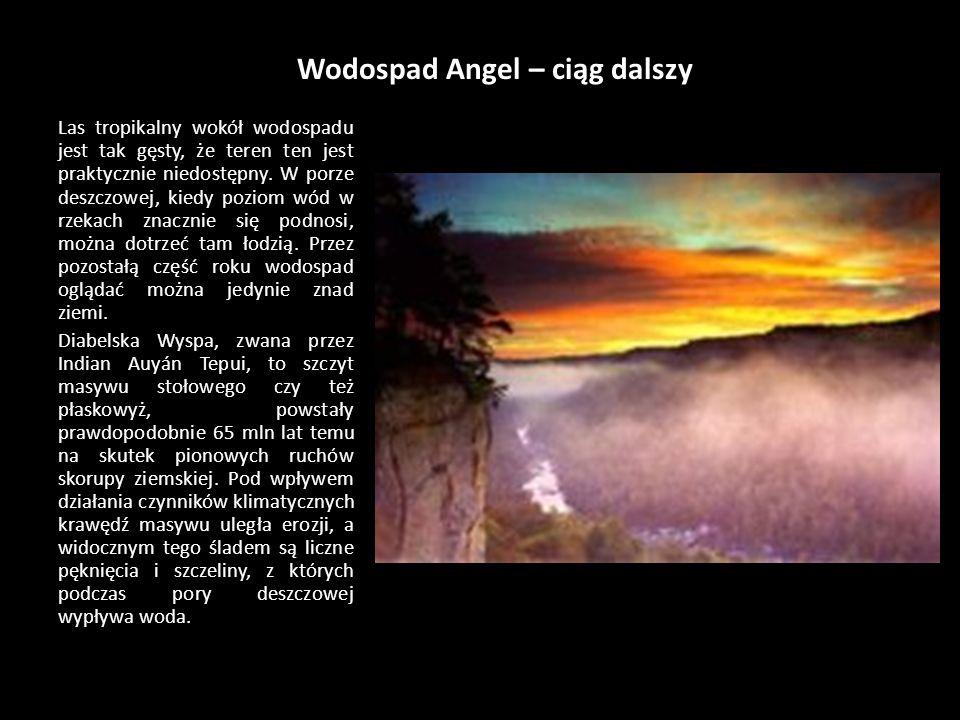 Wodospad Angel – ciąg dalszy Las tropikalny wokół wodospadu jest tak gęsty, że teren ten jest praktycznie niedostępny.