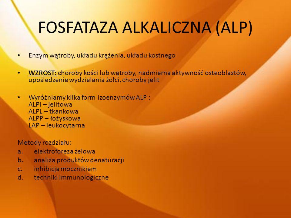 FOSFATAZA ALKALICZNA (ALP) Enzym wątroby, układu krążenia, układu kostnego WZROST: choroby kości lub wątroby, nadmierna aktywność osteoblastów, upośle