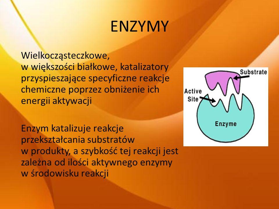 ENZYMY JEDNOSTKI AKTYWNOŚCI ENZYMÓW: 1 JEDNOSTKA (1 UNIT) – to taka ilość enzymu, która w standardowych warunkach katalizuje powstawanie lub rozpad 1mikromola substratu/produktu w ciągu 1 min 1 KATAL (1KAT)– to taka ilość enzymu, która w standardowych warunkach przekształca 1 mol substratu w ciągu 1s (jednostka zgodna z układem SI) 1 kat = 610 7 U 1 U = 16,6710 -9 kat = 16,67 nkat