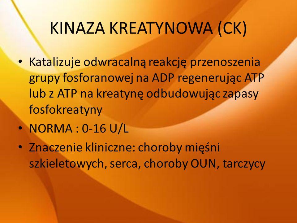 KINAZA KREATYNOWA (CK) Katalizuje odwracalną reakcję przenoszenia grupy fosforanowej na ADP regenerując ATP lub z ATP na kreatynę odbudowując zapasy f