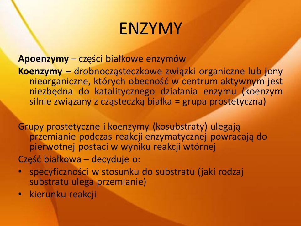 ENZYMY Apoenzymy – części białkowe enzymów Koenzymy – drobnocząsteczkowe związki organiczne lub jony nieorganiczne, których obecność w centrum aktywny