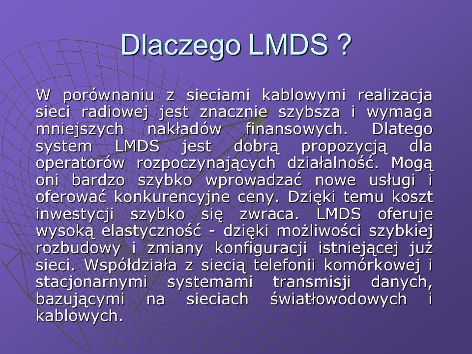 Dlaczego LMDS .
