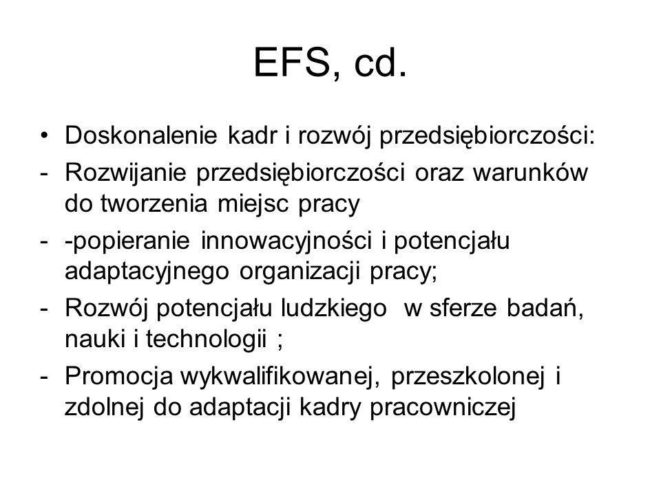 EFS, cd. Doskonalenie kadr i rozwój przedsiębiorczości: -Rozwijanie przedsiębiorczości oraz warunków do tworzenia miejsc pracy --popieranie innowacyjn