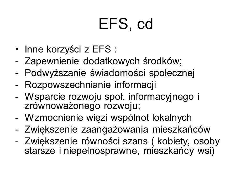 EFS, cd Inne korzyści z EFS : -Zapewnienie dodatkowych środków; -Podwyższanie świadomości społecznej -Rozpowszechnianie informacji -Wsparcie rozwoju s