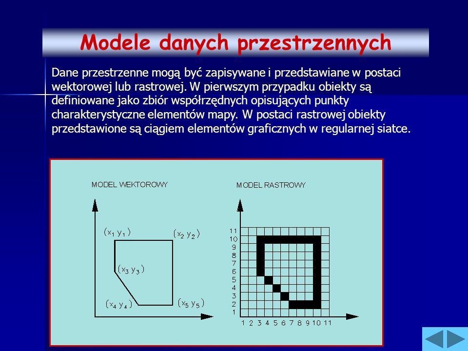 Dane przestrzenne mogą być zapisywane i przedstawiane w postaci wektorowej lub rastrowej. W pierwszym przypadku obiekty są definiowane jako zbiór wspó