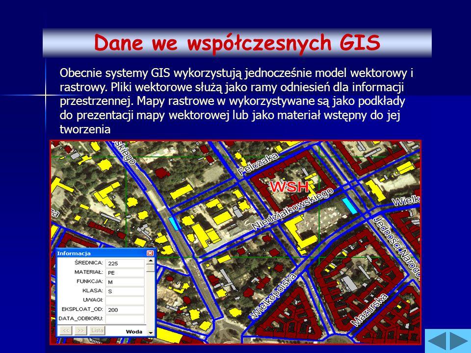 Obecnie systemy GIS wykorzystują jednocześnie model wektorowy i rastrowy. Pliki wektorowe służą jako ramy odniesień dla informacji przestrzennej. Mapy