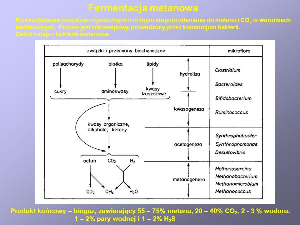 Fermentacja metanowa Przekształcenie związków organicznych o różnym stopniu utlenienia do metanu i CO 2 w warunkach beztlenowych. Proces jest kilkueta