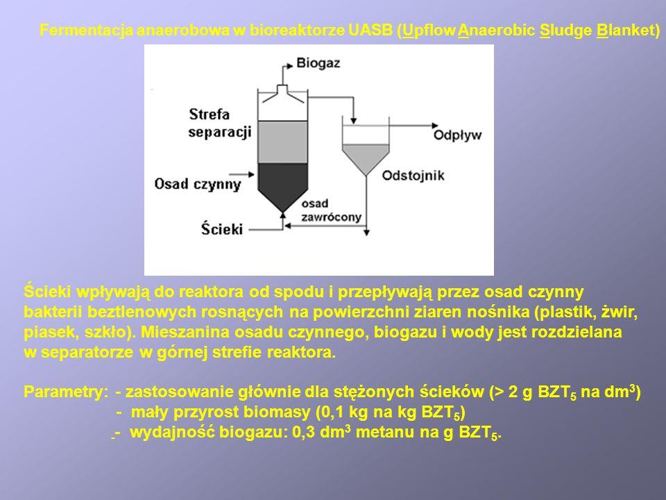 Fermentacja anaerobowa w bioreaktorze UASB (Upflow Anaerobic Sludge Blanket) Ścieki wpływają do reaktora od spodu i przepływają przez osad czynny bakt