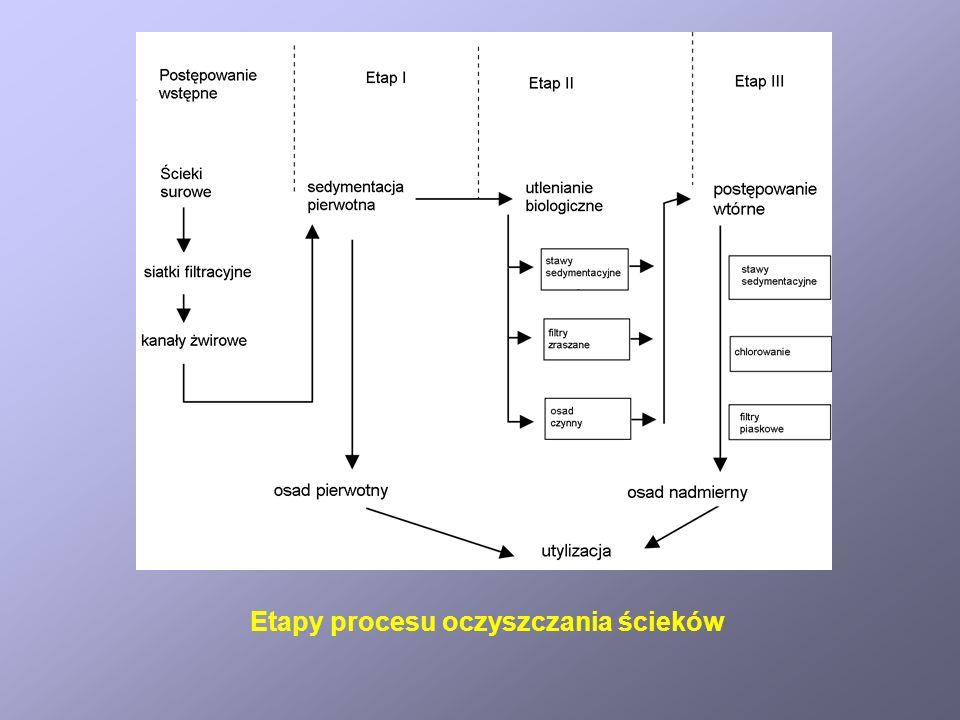 Stawy sedymentacyjne Typowy ciąg technologiczny dla ścieków o wysokiej wartości BZT 5.