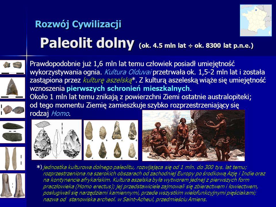 Rozwój Cywilizacji Paleolit dolny (ok. 4.5 mln lat ÷ ok. 8300 lat p.n.e.) Prawdopodobnie już 1,6 mln lat temu człowiek posiadł umiejętność wykorzystyw