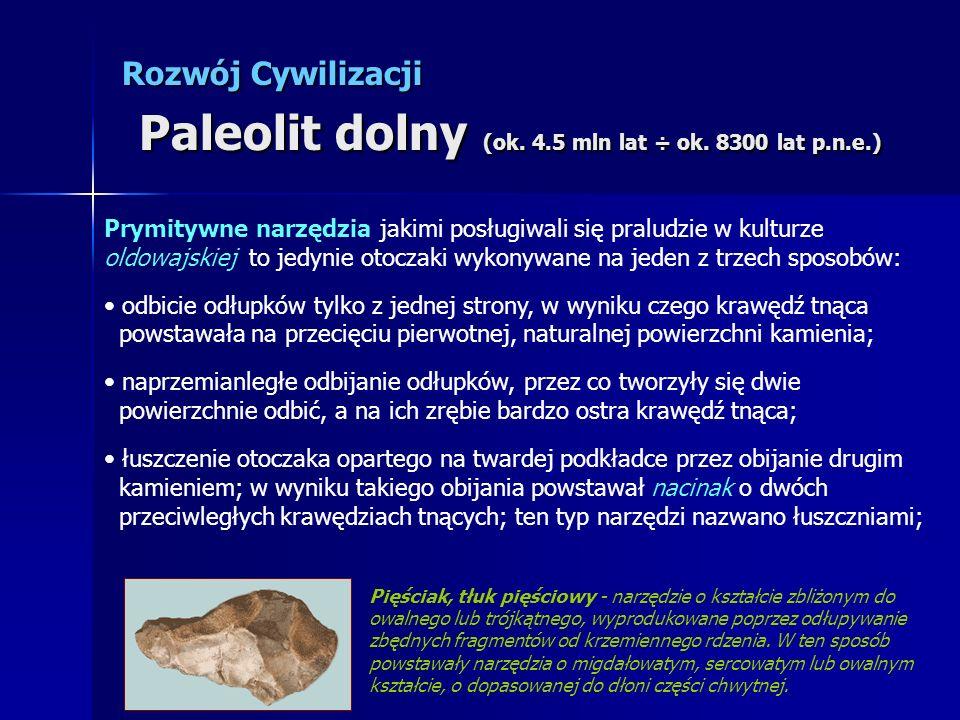 Rozwój Cywilizacji Paleolit dolny (ok. 4.5 mln lat ÷ ok. 8300 lat p.n.e.) Prymitywne narzędzia jakimi posługiwali się praludzie w kulturze oldowajskie