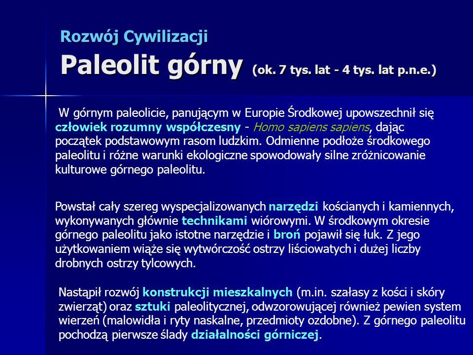 Rozwój Cywilizacji Paleolit górny (ok. 7 tys. lat - 4 tys. lat p.n.e.) W górnym paleolicie, panującym w Europie Środkowej upowszechnił się człowiek ro