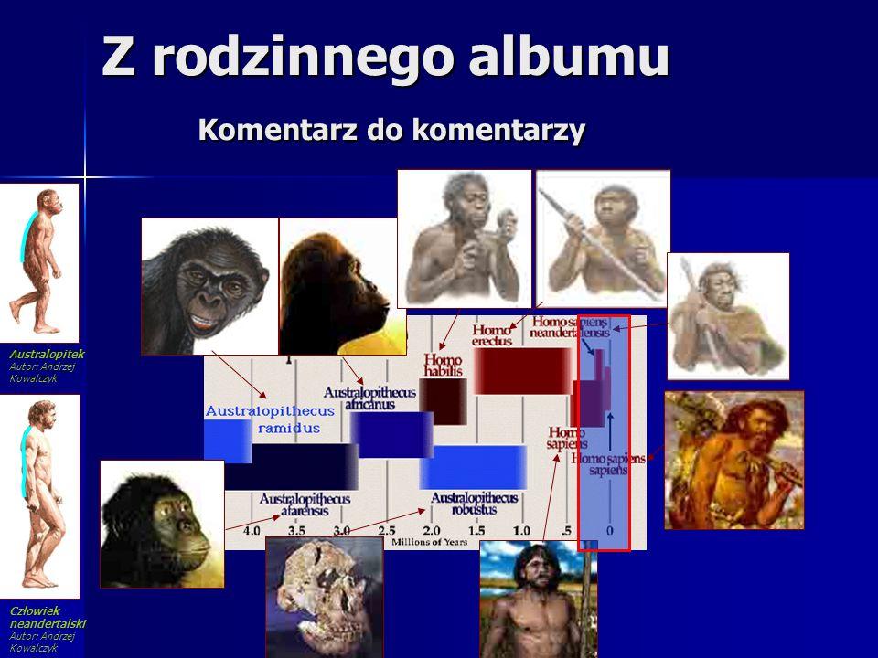 Z rodzinnego albumu Komentarz do komentarzy Człowiek neandertalski Autor: Andrzej Kowalczyk Australopitek Autor: Andrzej Kowalczyk
