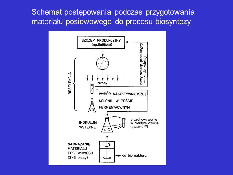 Schemat postępowania podczas przygotowania materiału posiewowego do procesu biosyntezy