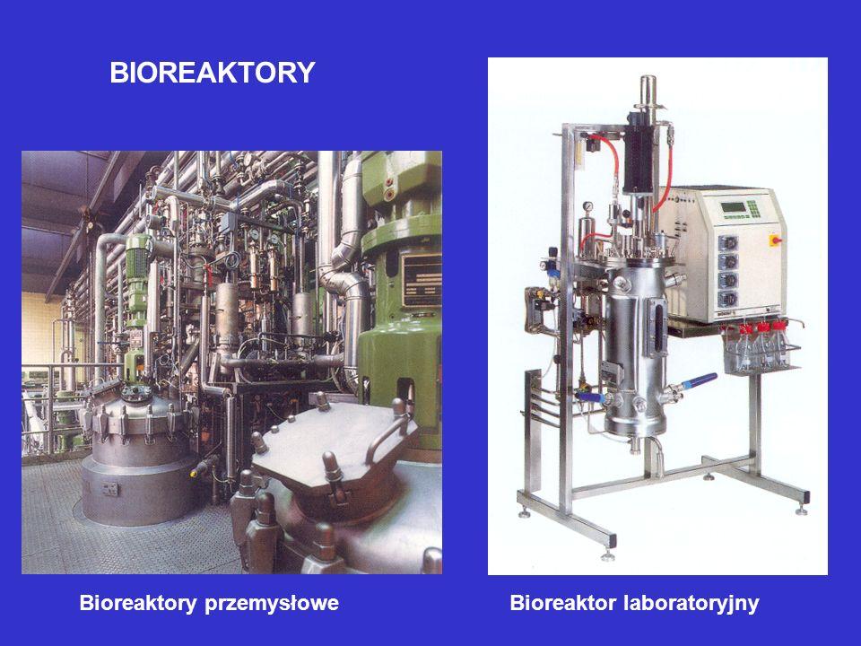 BIOREAKTORY Bioreaktory przemysłoweBioreaktor laboratoryjny