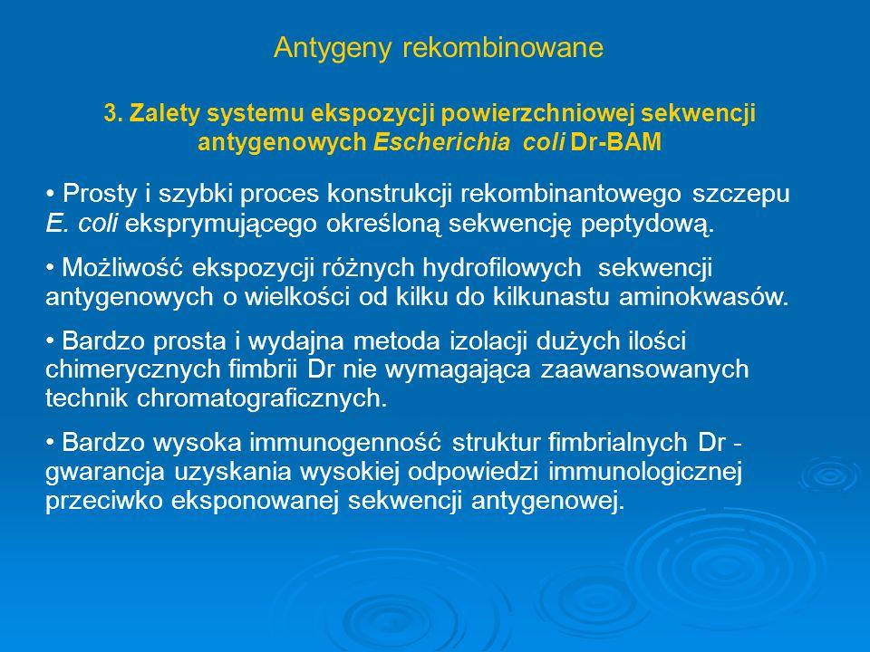 3. Zalety systemu ekspozycji powierzchniowej sekwencji antygenowych Escherichia coli Dr-BAM Prosty i szybki proces konstrukcji rekombinantowego szczep